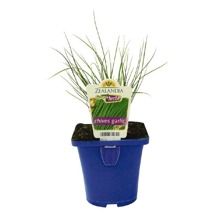 Growherbs Chives Garlic, , hi-res