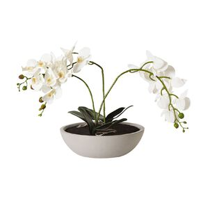 Living & Co Artificial Large Orchid Centerpiece 58cm Grey 58cm