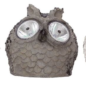 Kiwi Garden Solar Owl Light Assorted