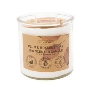 Living & Co Eco Jar Candle Plum & Boysenberry 10oz