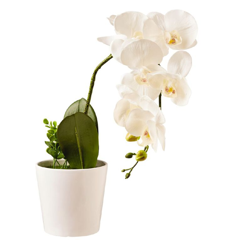 Living & Co Artificial Pot Orchid Flower White White 58cm, , hi-res image number null