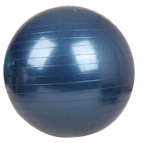 Active Intent Fitness Gym Ball 55cm