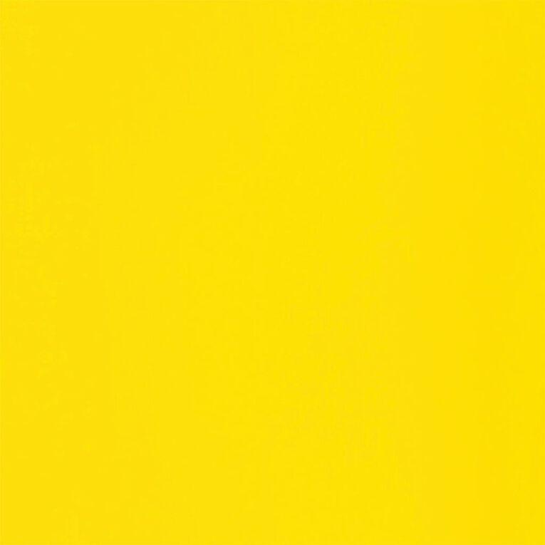 Liquitex Basics Acrylic 118ml Fluorescent Yellow, , hi-res