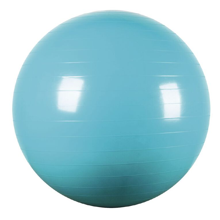 Active Intent Fitness Gym Ball Assorted 65cm, , hi-res