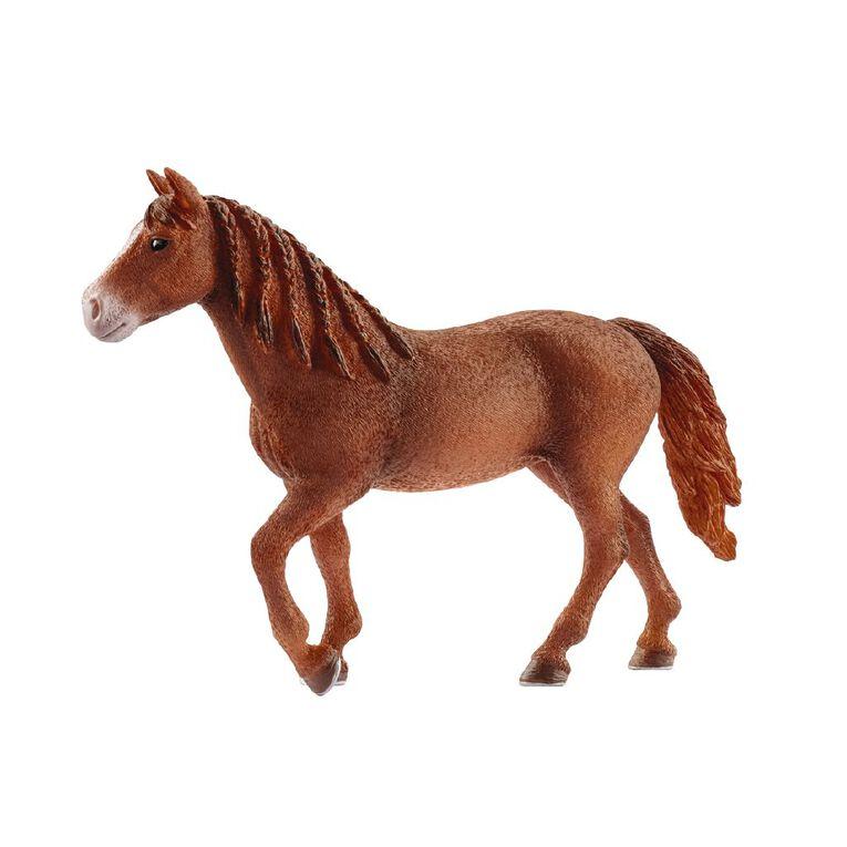 Schleich Morgan Horse Mare, , hi-res