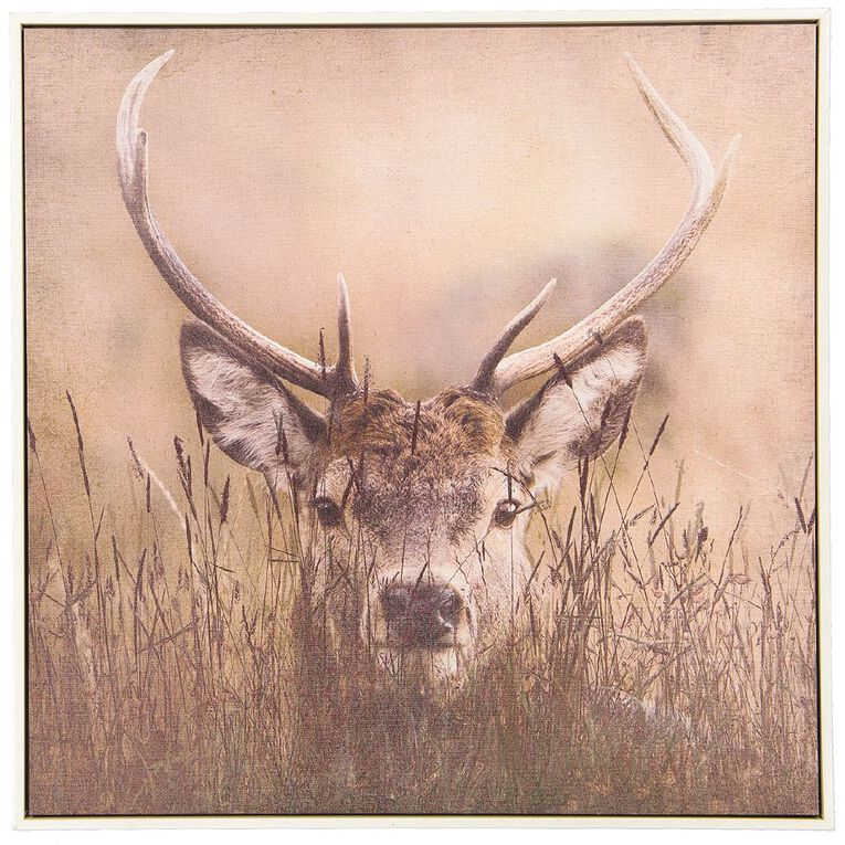 Living & Co Stag Framed Canvas 60 x 60 x 3.5cm, , hi-res