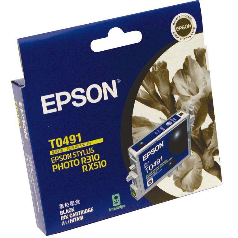 Epson Ink T0491 Black (441 Pages), , hi-res