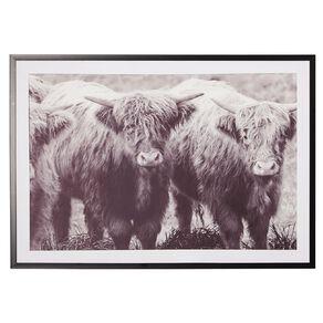 Living & Co Highland Cattle Framed Print 70 x 100 x 2.3cm