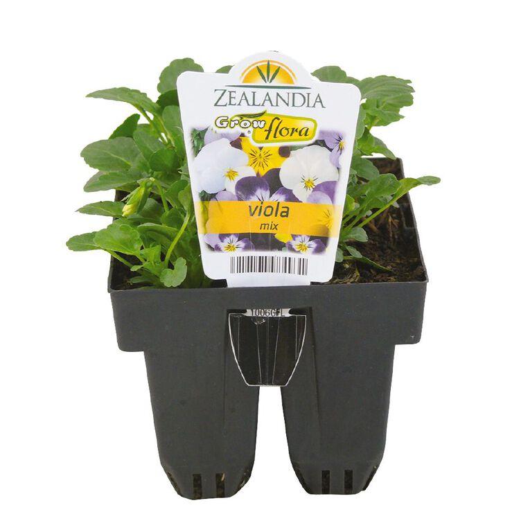 Growflora Viola Mix, , hi-res