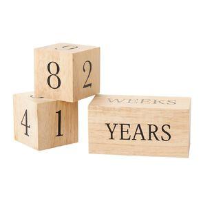 Babywise Milestone Blocks