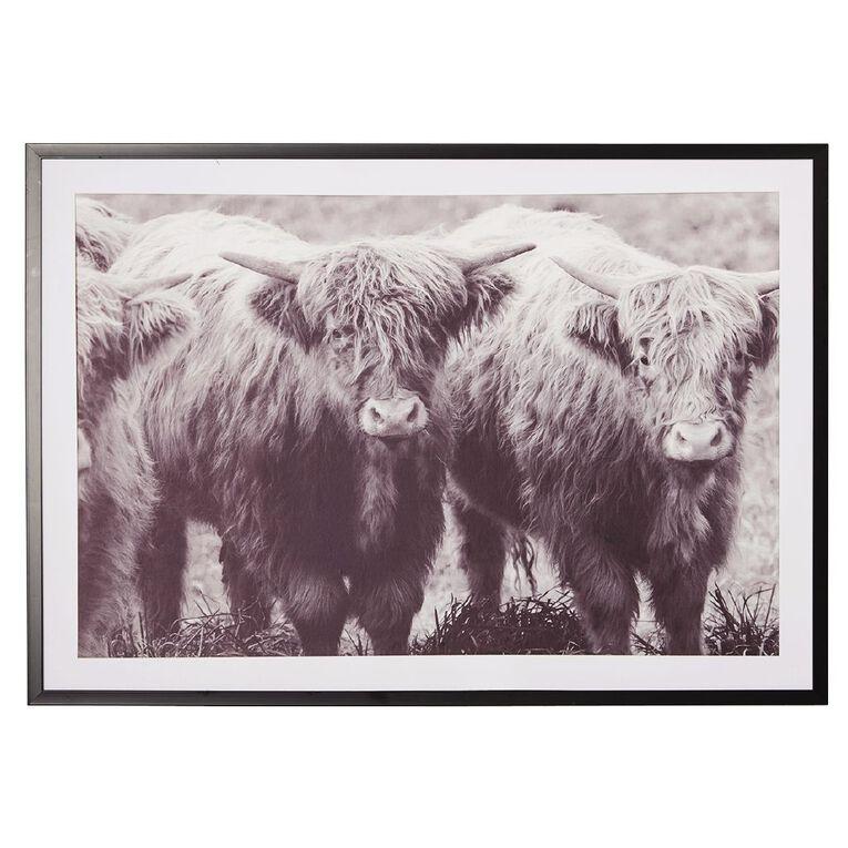 Living & Co Highland Cattle Framed Print 70 x 100 x 2.3cm, , hi-res