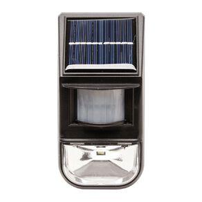 Kiwi Garden Solar Sensor Wall Light 50 Lumens
