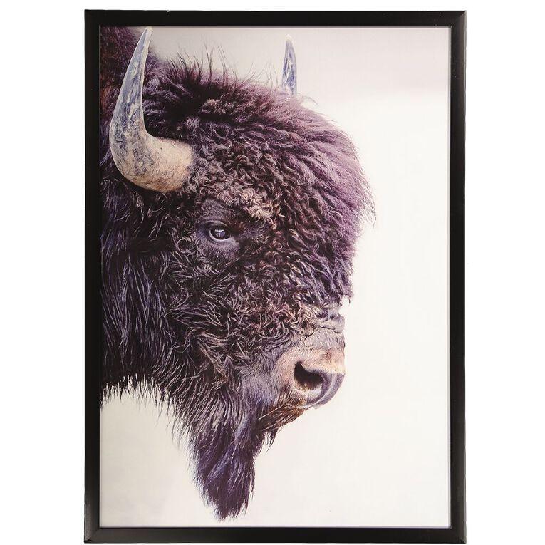 Living & Co Buffalo Framed Print 50 x 70 x 2.3cm, , hi-res