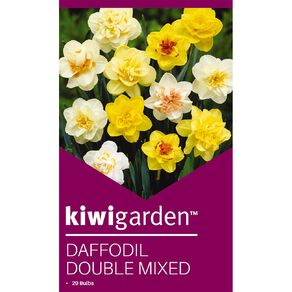 Kiwi Garden Daffodil Double Mixed 20PK