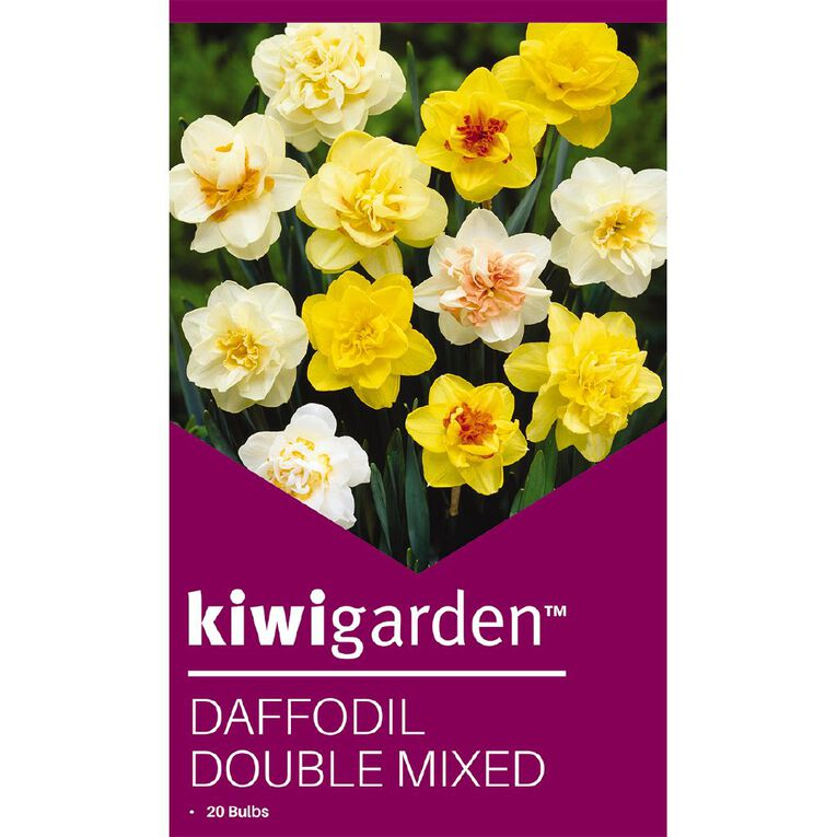 Kiwi Garden Daffodil Double Mixed 20PK, , hi-res