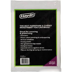 Haydn Medium Weight Plastic Protection Sheet