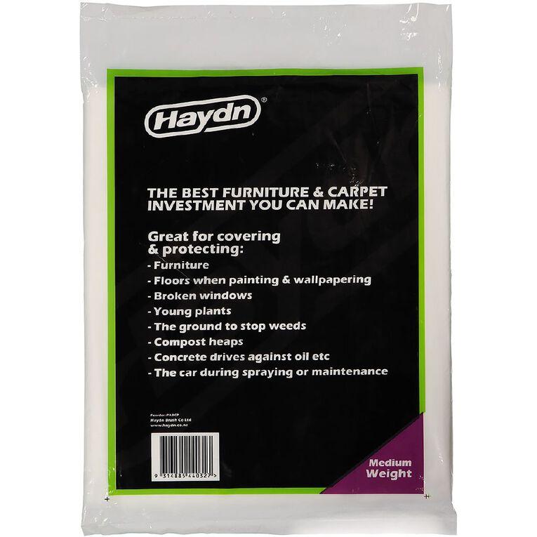 Haydn Medium Weight Plastic Protection Sheet, , hi-res