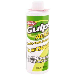 Gulp Alive Recharge Juice 236ml