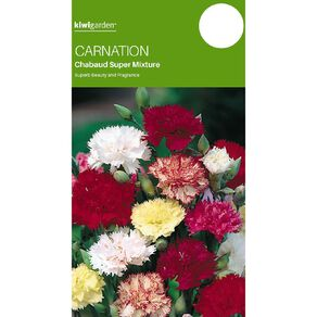 Kiwi Garden Carnation Chaubaud Mix