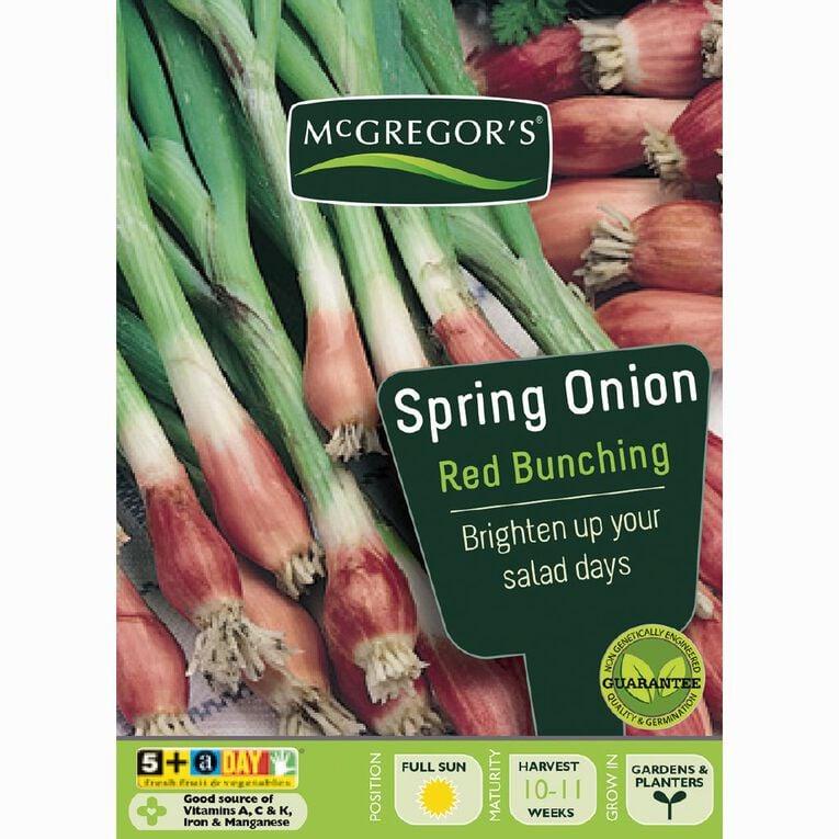 McGregor's Red Bunching Spring Onion Vegetable Seeds, , hi-res