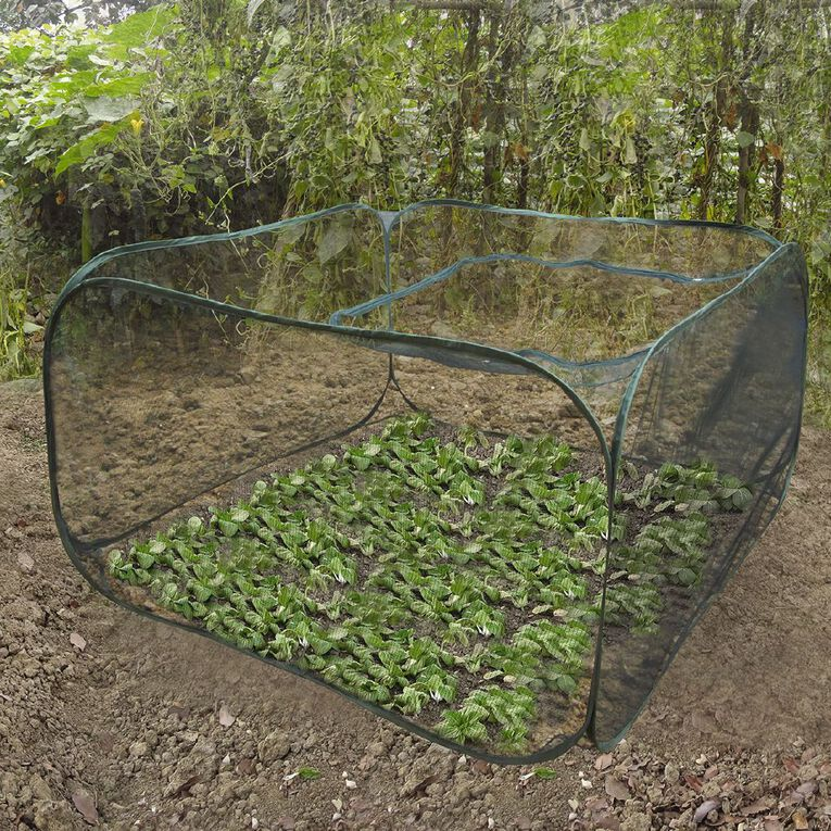 Kiwi Garden Pop Up Vegetable Cover Square, , hi-res