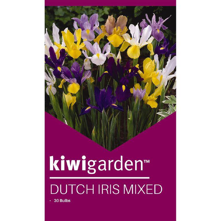 Kiwi Garden Dutch Iris Mixed 30PK, , hi-res