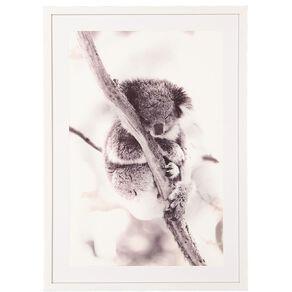 Living & Co Koala Framed Print 50 x 70 x 2.3cm