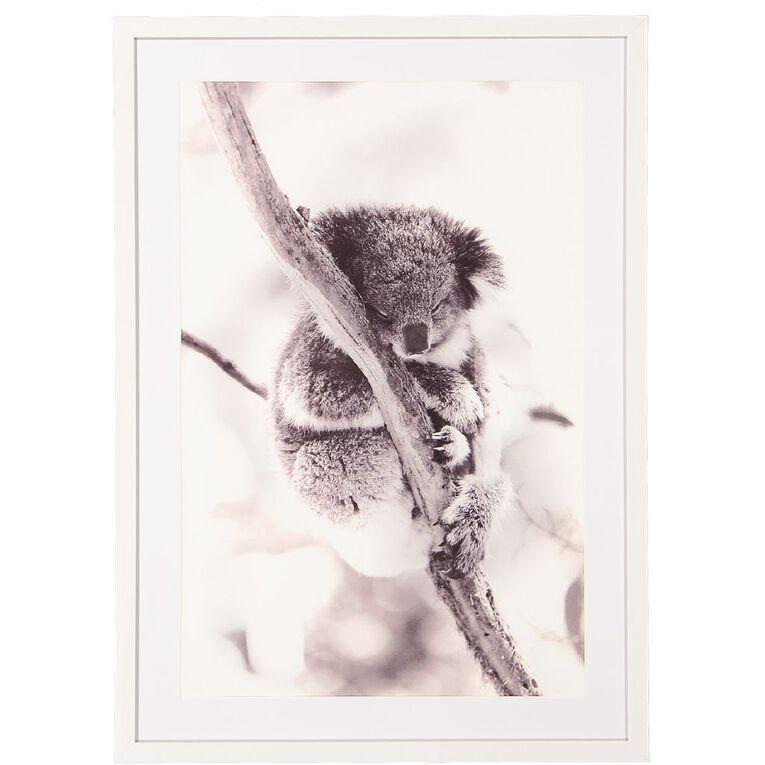 Living & Co Koala Framed Print 50 x 70 x 2.3cm, , hi-res