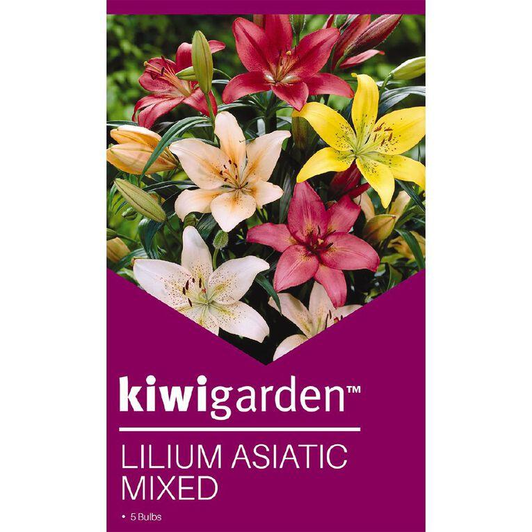 Kiwi Garden Asiatic Lilium Bulb Mixed 5PK, , hi-res