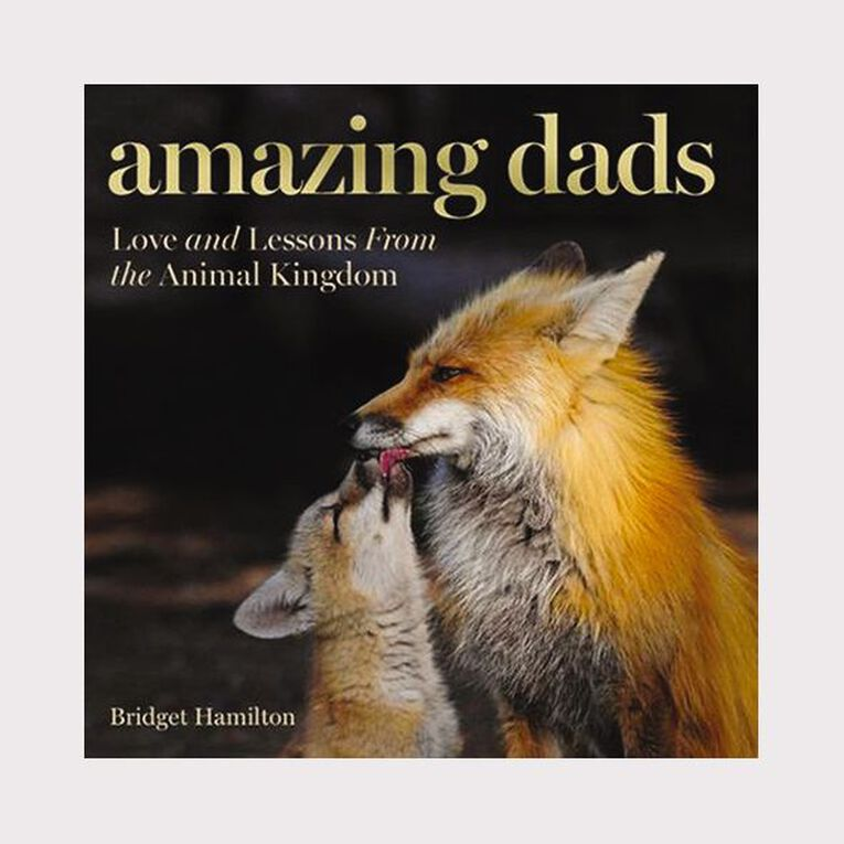 Amazing Dads: Love & Lessons from the Animal King by Bridget Hamilton, , hi-res