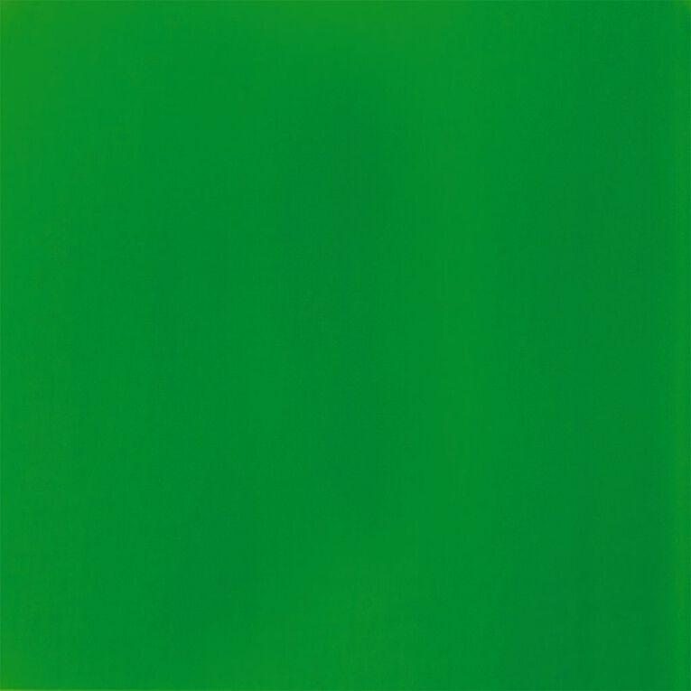 Liquitex Basics Acrylic 118ml Fluorescent Green, , hi-res