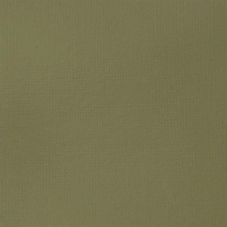 Liquitex Basics Acrylic 118ml Green Gray, , hi-res
