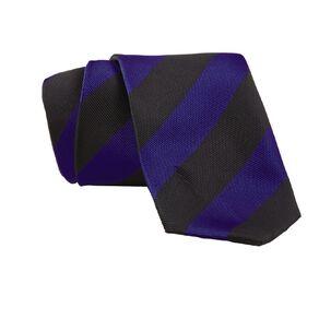 Schooltex Striped Tie