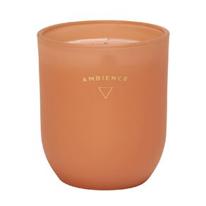 Living & Co Ambience Jar Candle Citrus Grove