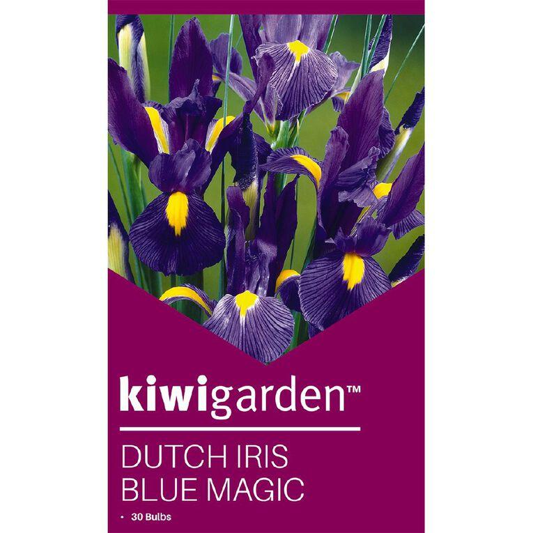 Kiwi Garden Dutch Iris Blue Magic 30PK, , hi-res
