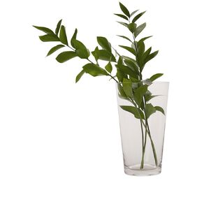Living & Co Classic Flared Vase Clear 25cm
