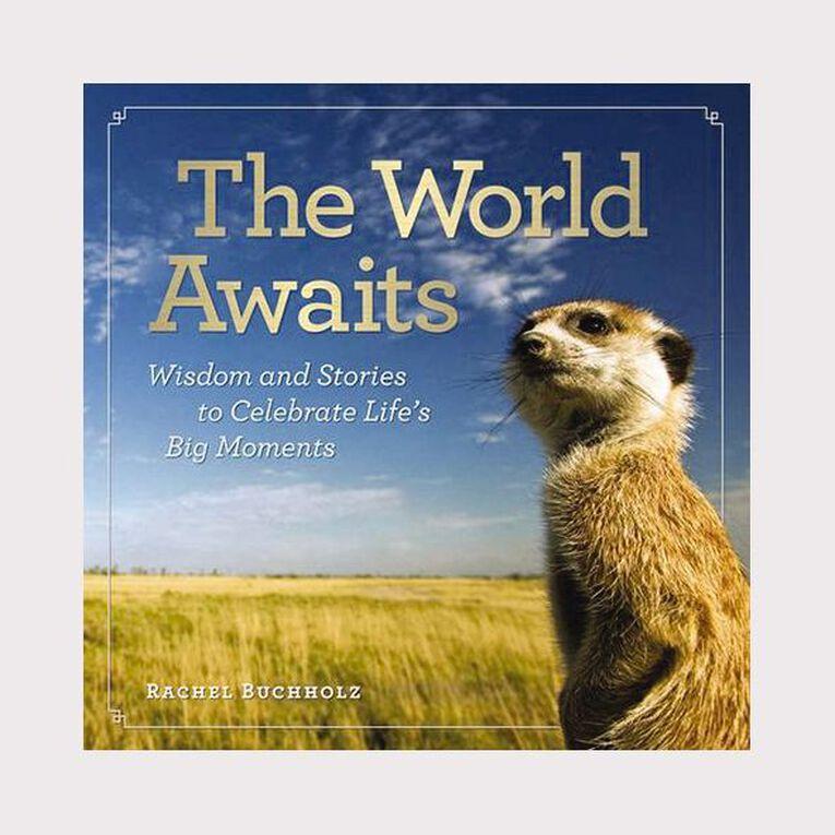 The World Awaits by Rachel Buchholz, , hi-res