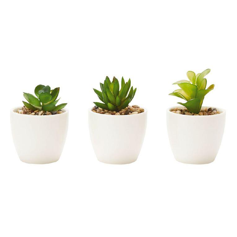 Living & Co Artificial Succulents Set of 3 White, , hi-res