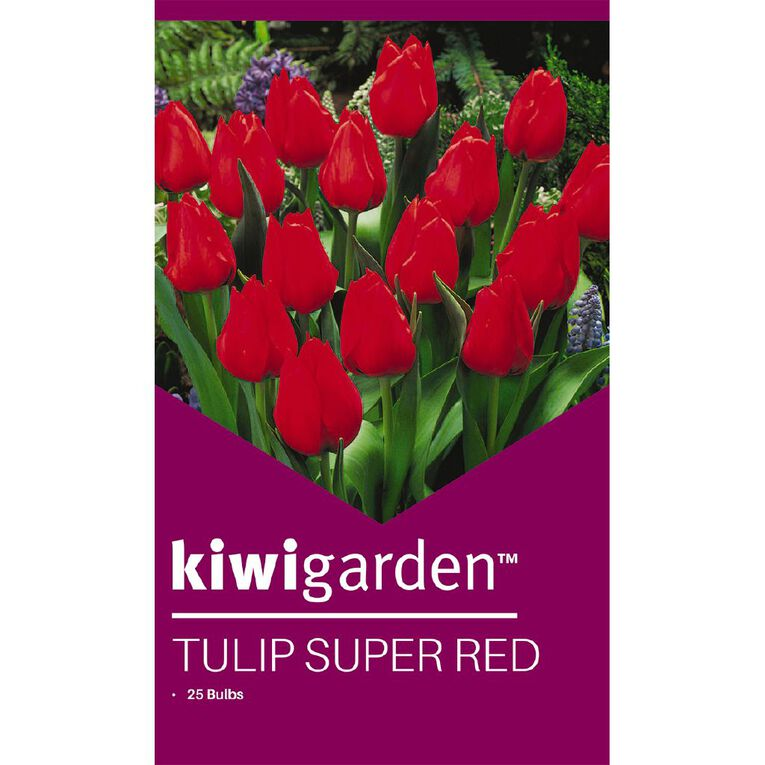 Kiwi Garden Tulip Super Red 25PK, , hi-res