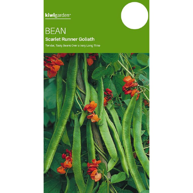 Kiwi Garden Bean Scarlet Runner Goliath, , hi-res