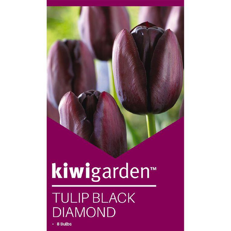 Kiwi Garden Tulip Black Diamond 8PK, , hi-res