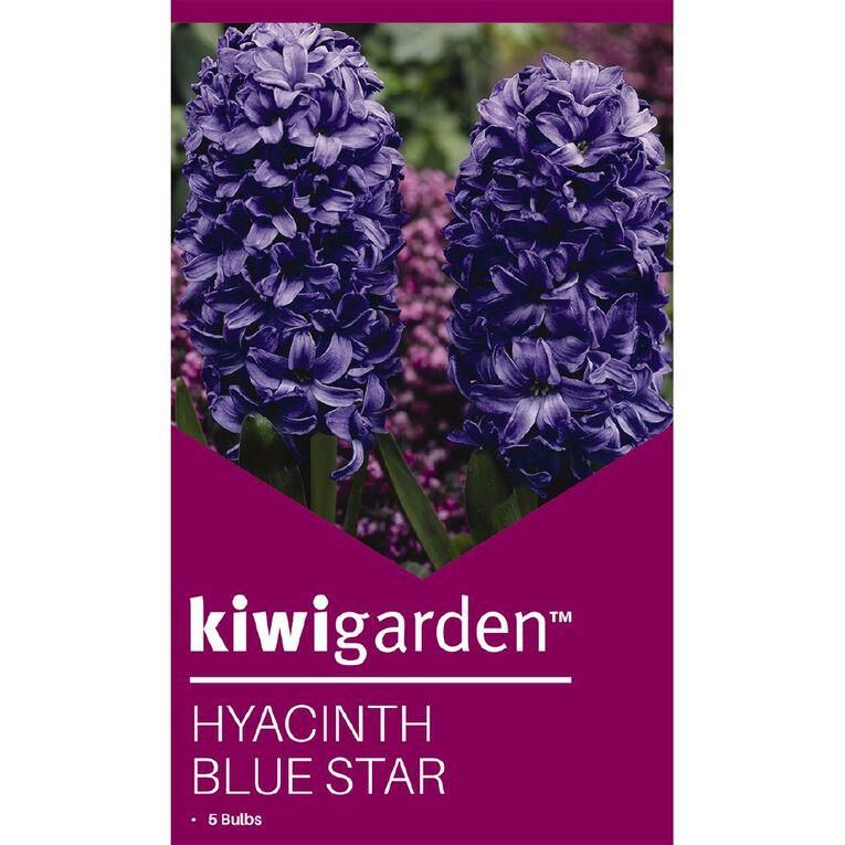 Kiwi Garden Hyacinth Blue Star 5PK, , hi-res